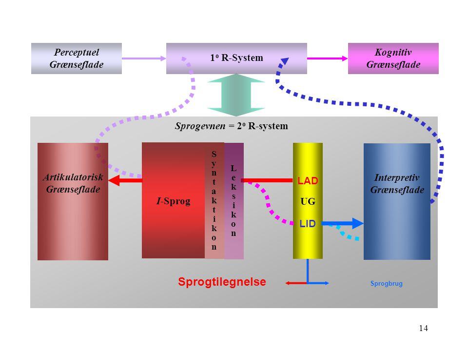 13 Struktur Perceptuel grænseflade LydBetydning Leksikon Sprogevnen >>>I-sprog - en beregningsmekanisme til sammenkobling af lyd og betydning Kognitiv grænseflade Interpretiv grænseflade Artikulatorisk grænseflade Den klassiske model af sprogevnen