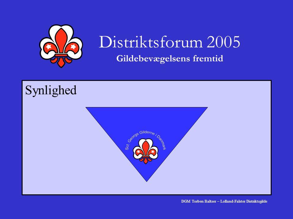 Distriktsforum 2005 Gildebevægelsens fremtid Synlighed DGM Torben Baltser – Lolland-Falster Distriktsgilde