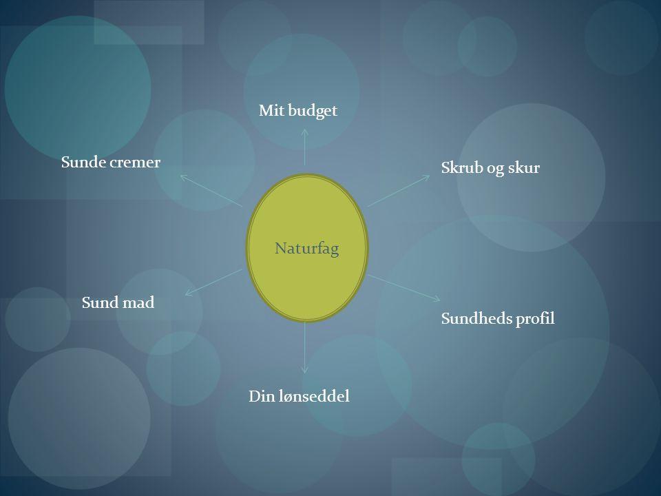 Naturfag Sunde cremer Sund mad Din lønseddel Mit budget Skrub og skur Sundheds profil