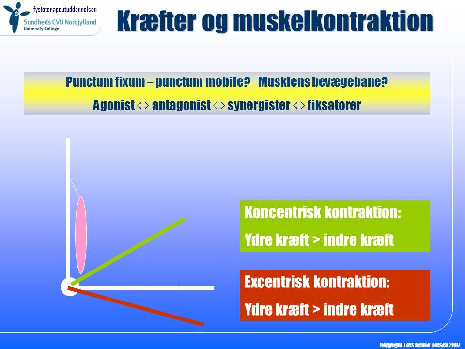 fysioterapeutuddannelsen Copyright Lars Henrik Larsen 2007 Kræfter og muskelkontraktion Koncentrisk kontraktion: Ydre kræft > indre kræft Excentrisk k