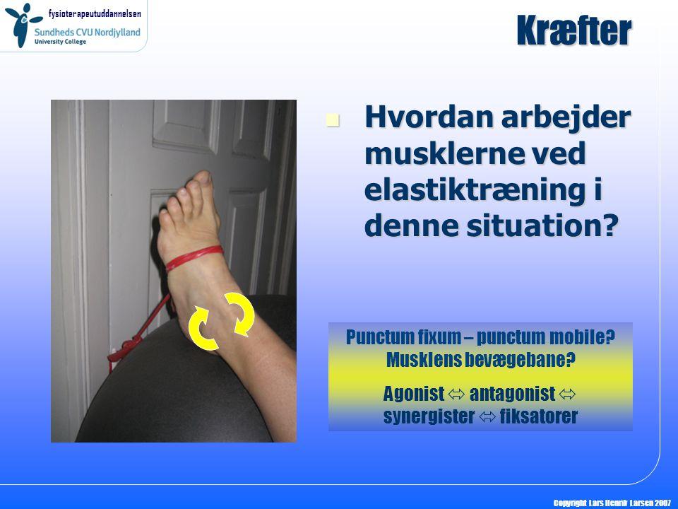 fysioterapeutuddannelsen Copyright Lars Henrik Larsen 2007 Kræfter Hvordan arbejder musklerne ved elastiktræning i denne situation? Hvordan arbejder m