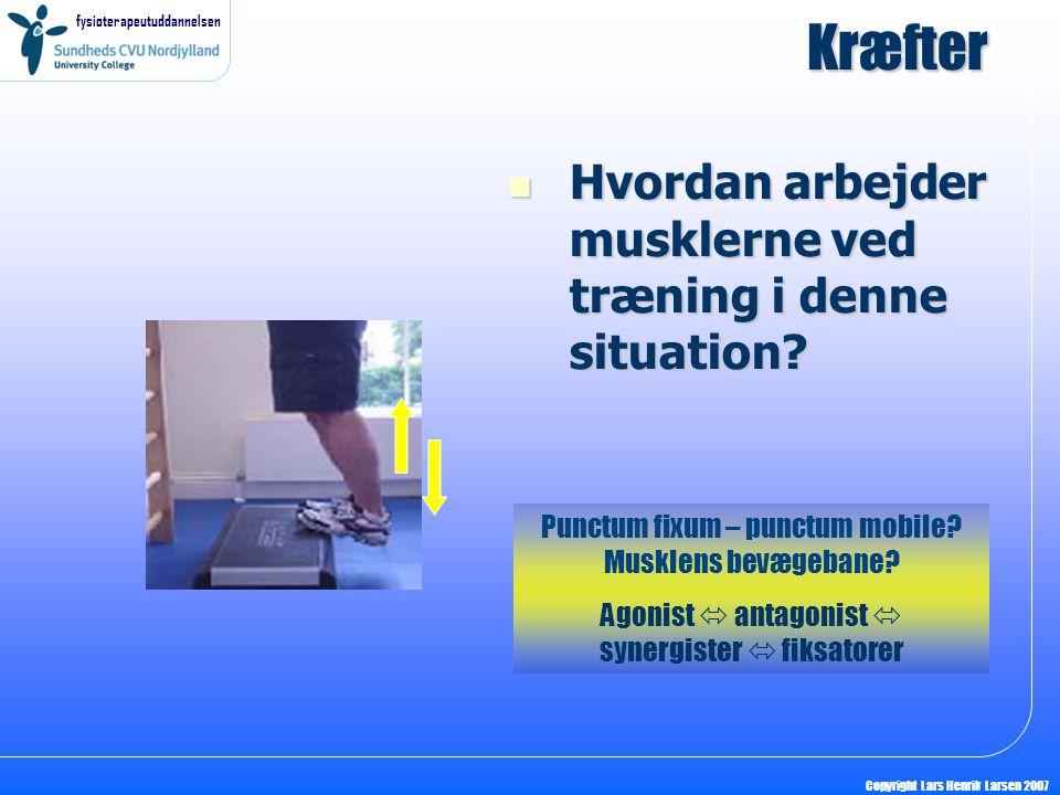 fysioterapeutuddannelsen Copyright Lars Henrik Larsen 2007 Kræfter Hvordan arbejder musklerne ved træning i denne situation? Hvordan arbejder musklern
