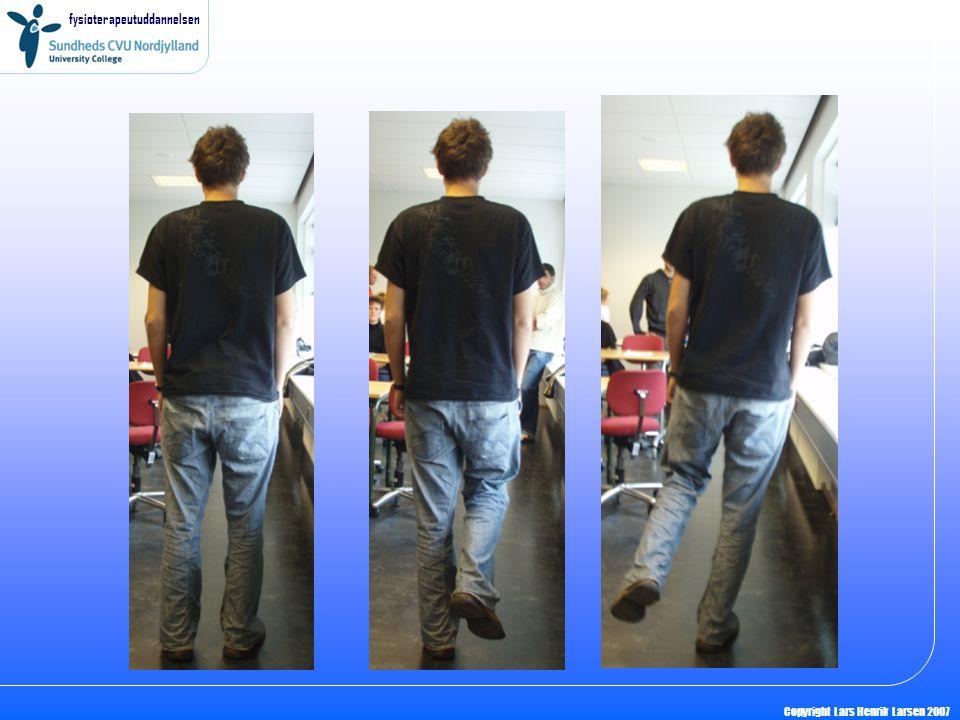 fysioterapeutuddannelsen Copyright Lars Henrik Larsen 2007 Kræfter Hvordan arbejder musklerne ved elastiktræning i denne situation.