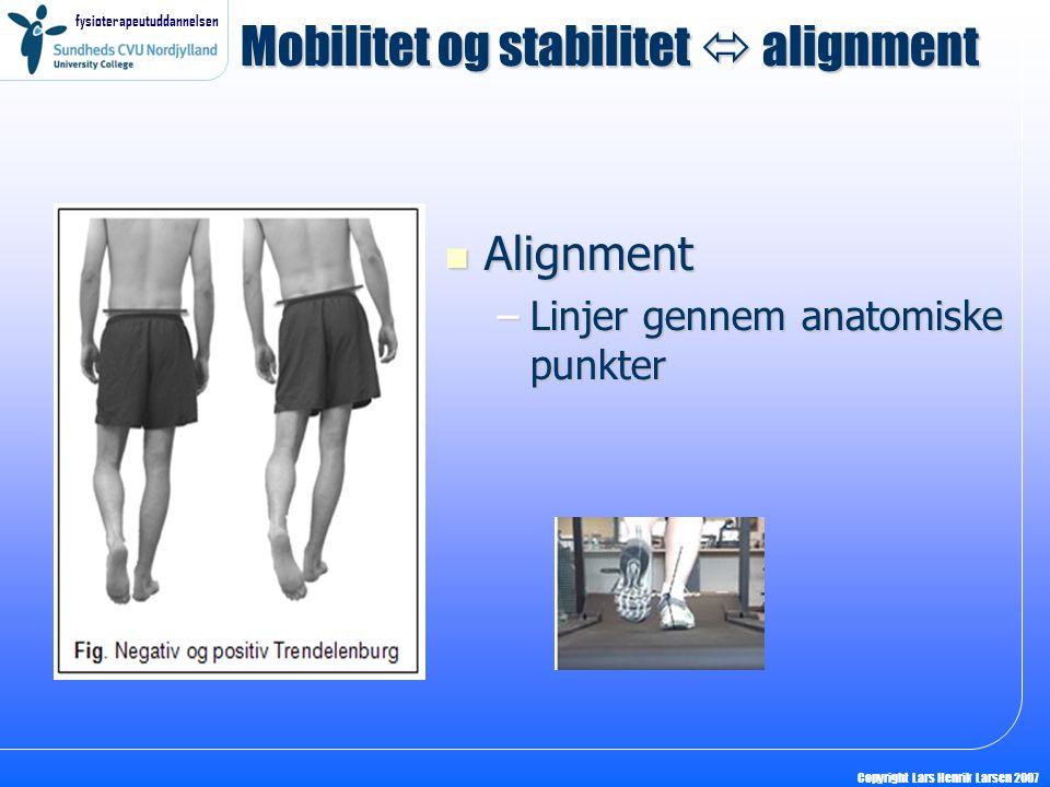 fysioterapeutuddannelsen Copyright Lars Henrik Larsen 2007 Opdel funktionen i delfunktioner Opdel funktionen i delfunktioner Beskriv den sidste af delfunktionerne i forhold til bevægelse i rummet + bevægelse i leddene i UE – husk at anvende termer der ikke misforstås Beskriv den sidste af delfunktionerne i forhold til bevægelse i rummet + bevægelse i leddene i UE – husk at anvende termer der ikke misforstås Lav en analyse af delfunktionerne: Lav en analyse af delfunktionerne: –Hvad er formålet med de enkelte delfunktioner, set i relation til hele færdigheden.
