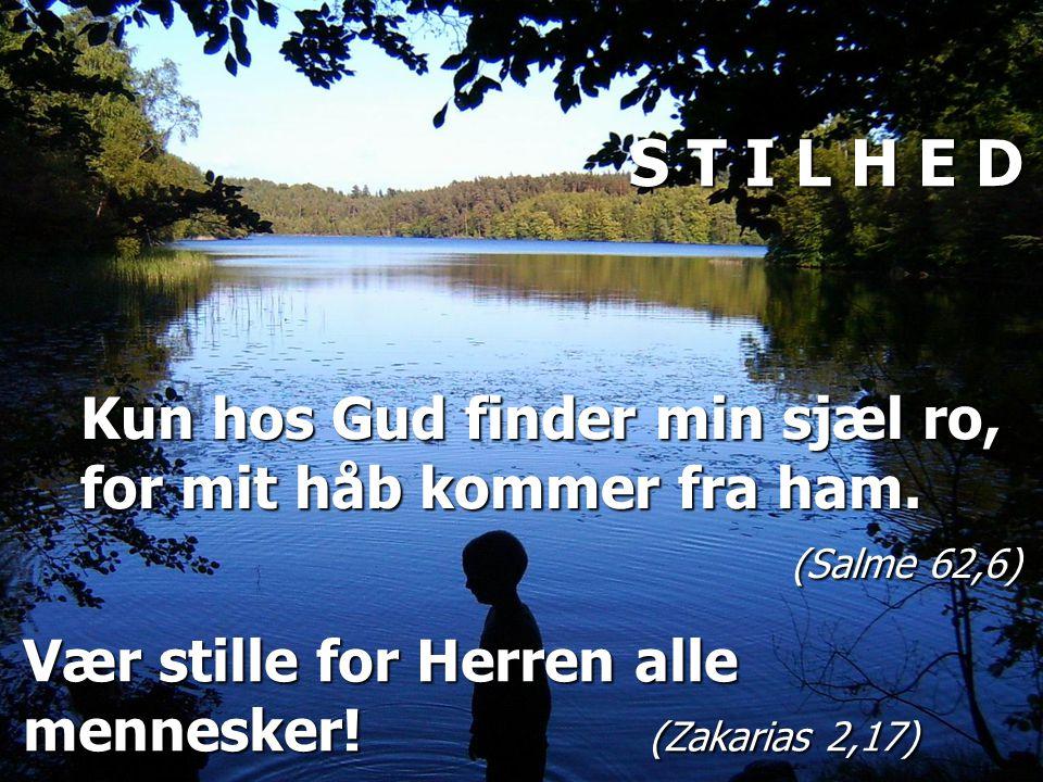 Kun hos Gud finder min sjæl ro, for mit håb kommer fra ham.