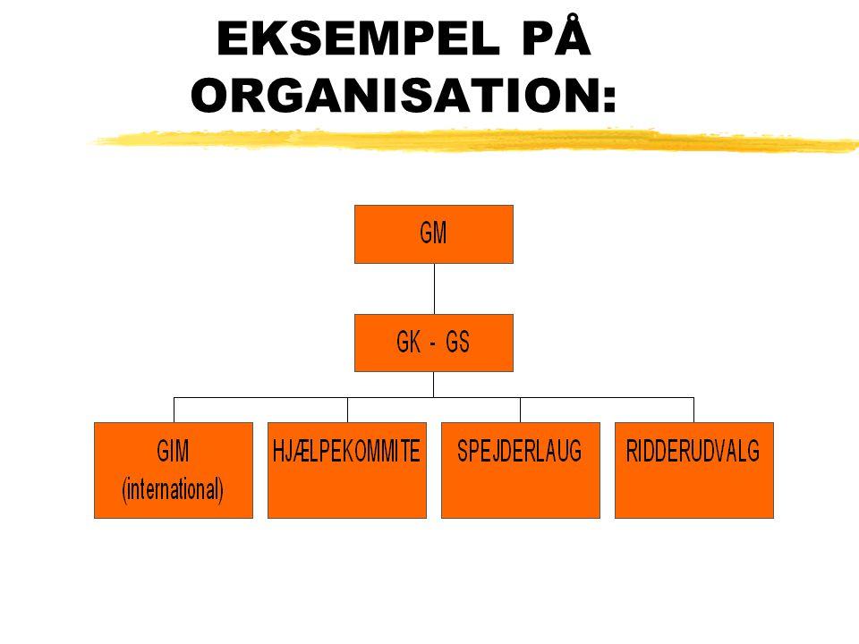EKSEMPEL PÅ ORGANISATION: