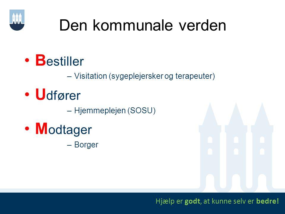 Den kommunale verden B estiller –Visitation (sygeplejersker og terapeuter) U dfører –Hjemmeplejen (SOSU) M odtager –Borger Hjælp er godt, at kunne sel