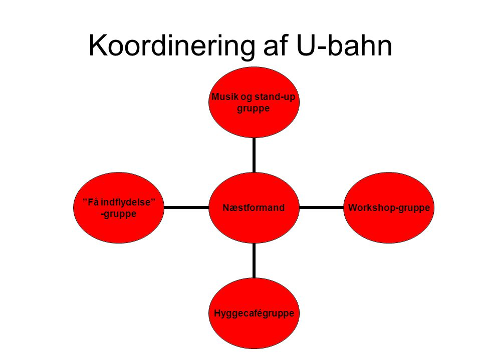 Koordinering af U-bahn Næstformand Musik og stand-up gruppe Workshop-gruppeHyggecafégruppe Få indflydelse -gruppe