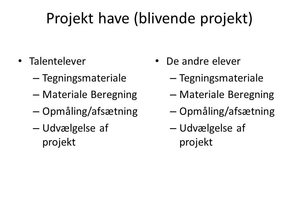 Projekt have (blivende projekt) Talentelever – Tegningsmateriale – Materiale Beregning – Opmåling/afsætning – Udvælgelse af projekt De andre elever – Tegningsmateriale – Materiale Beregning – Opmåling/afsætning – Udvælgelse af projekt
