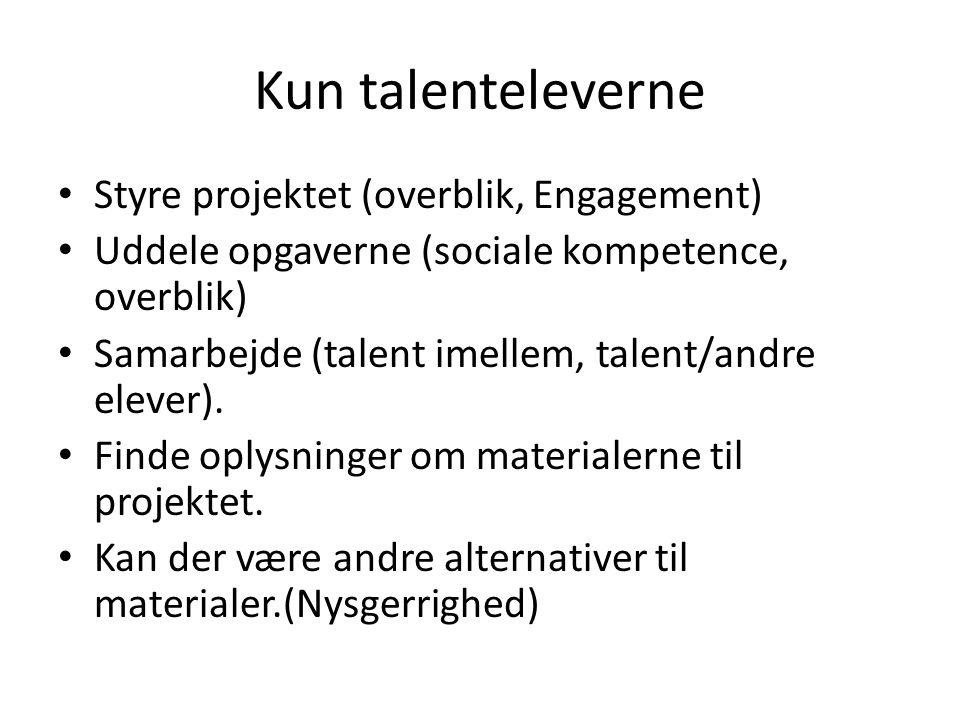 Kun talenteleverne Styre projektet (overblik, Engagement) Uddele opgaverne (sociale kompetence, overblik) Samarbejde (talent imellem, talent/andre elever).