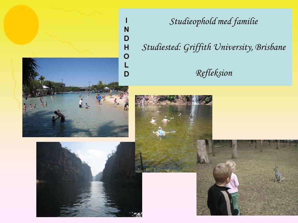 Studieophold med familie Studiested: Griffith University, Brisbane Refleksion INDHOLDINDHOLD