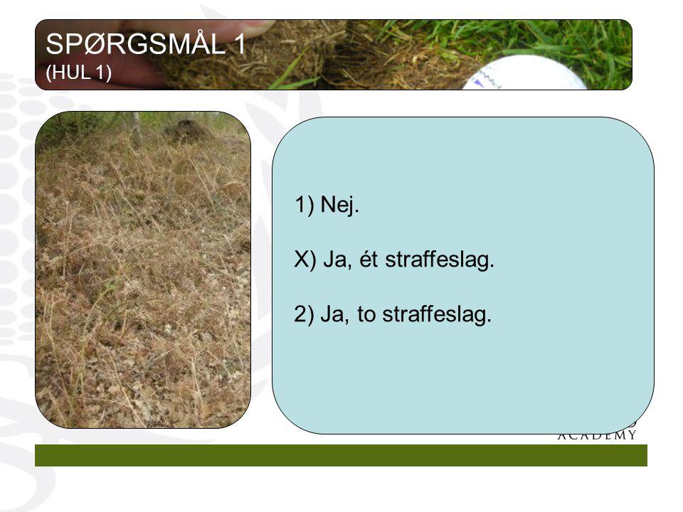1) Nej. X) Ja, ét straffeslag. 2) Ja, to straffeslag. SPØRGSMÅL 1 (HUL 1)