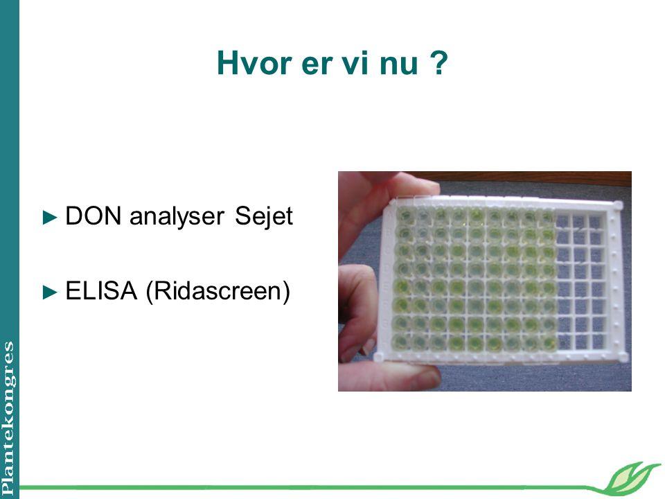 Hvor er vi nu ► DON analyser Sejet ► ELISA (Ridascreen)