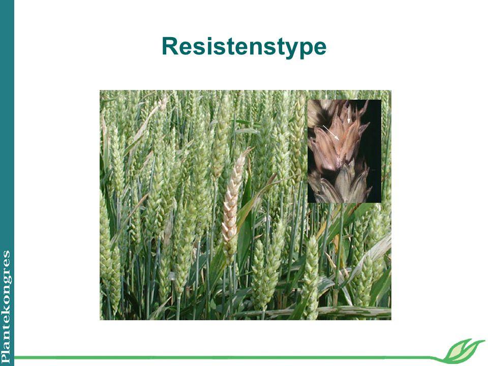 Resistenstype