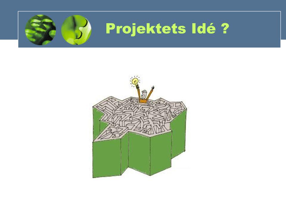 Projektets Idé