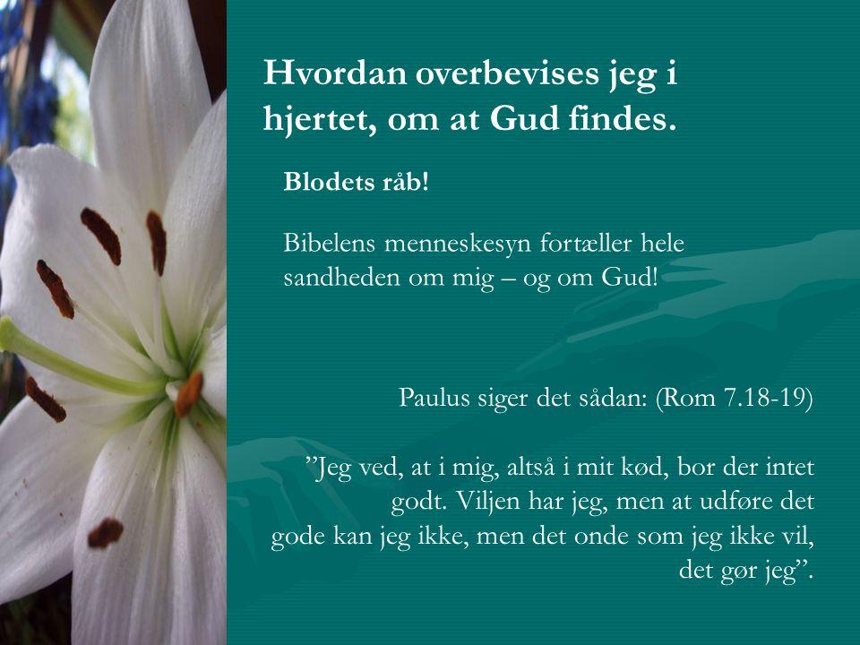 Hvordan overbevises jeg i hjertet, om at Gud findes.