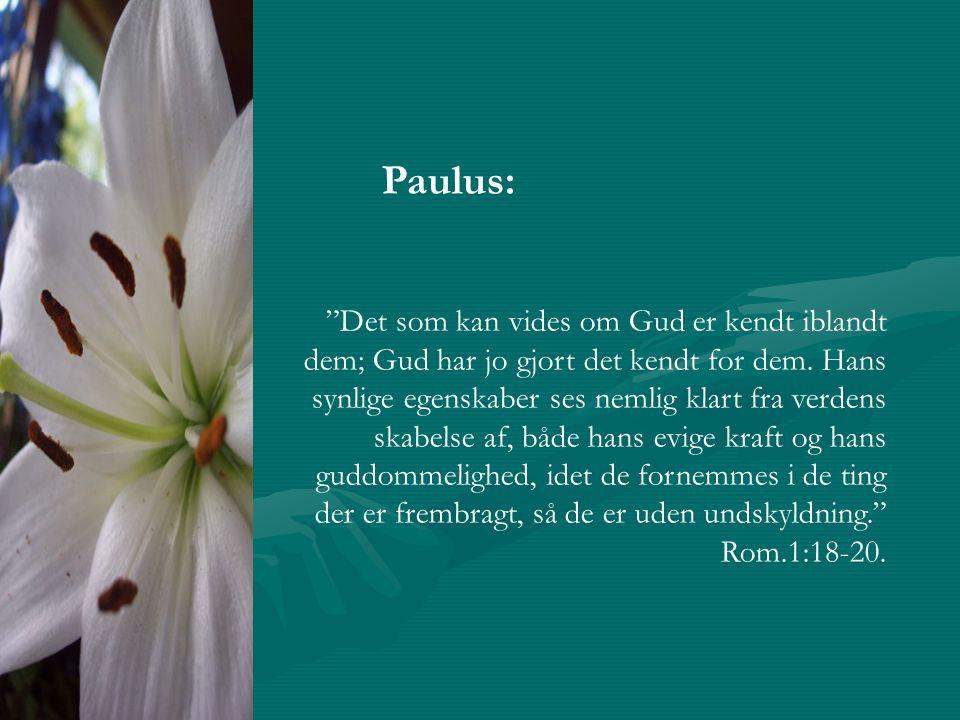 Paulus: Det som kan vides om Gud er kendt iblandt dem; Gud har jo gjort det kendt for dem.