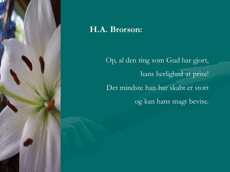 H.A. Brorson: Op, al den ting som Gud har gjort, hans herlighed at prise.