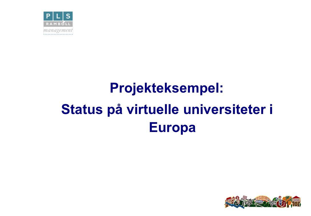 Projekteksempel: Status på virtuelle universiteter i Europa