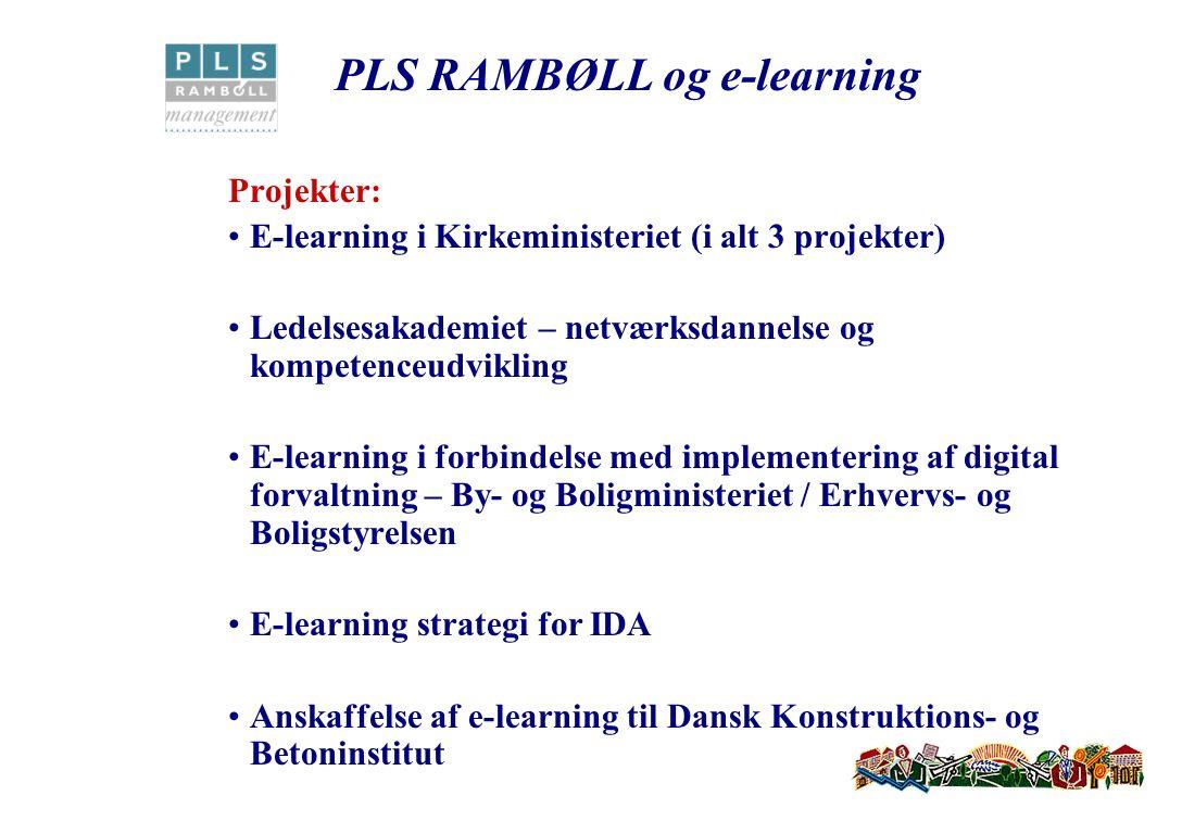 Projekter: E-learning i Kirkeministeriet (i alt 3 projekter) Ledelsesakademiet – netværksdannelse og kompetenceudvikling E-learning i forbindelse med implementering af digital forvaltning – By- og Boligministeriet / Erhvervs- og Boligstyrelsen E-learning strategi for IDA Anskaffelse af e-learning til Dansk Konstruktions- og Betoninstitut PLS RAMBØLL og e-learning