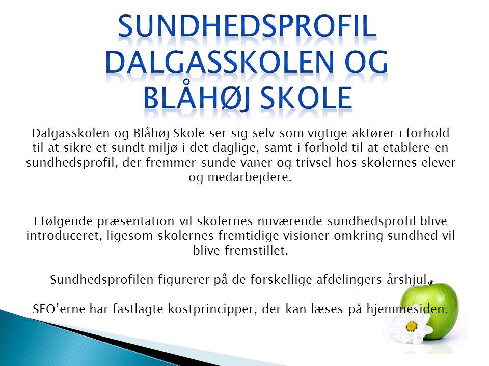 Dalgasskolen og Blåhøj Skole ser sig selv som vigtige aktører i forhold til at sikre et sundt miljø i det daglige, samt i forhold til at etablere en sundhedsprofil, der fremmer sunde vaner og trivsel hos skolernes elever og medarbejdere.
