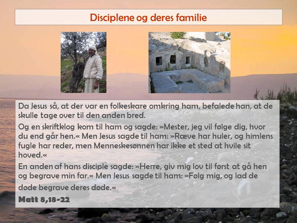 Disciplene og deres familie Da Jesus så, at der var en folkeskare omkring ham, befalede han, at de skulle tage over til den anden bred.