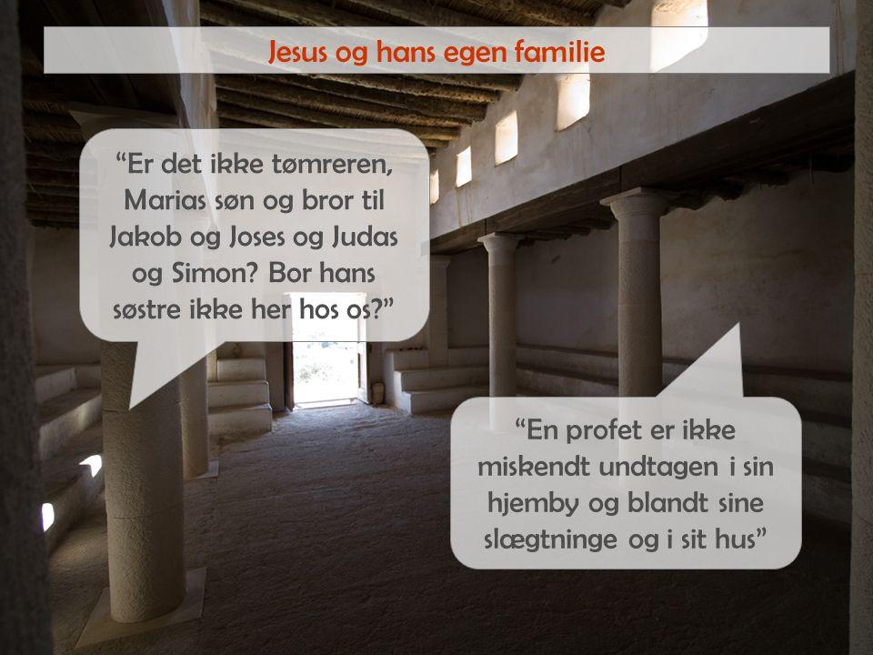 Jesus og hans egen familie Er det ikke tømreren, Marias søn og bror til Jakob og Joses og Judas og Simon.