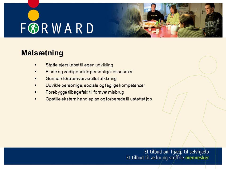  Støtte ejerskabet til egen udvikling  Finde og vedligeholde personlige ressourcer  Gennemføre erhvervsrettet afklaring  Udvikle personlige, sociale og faglige kompetencer  Forebygge tilbagefald til fornyet misbrug  Opstille ekstern handleplan og forberede til ustøttet job Målsætning