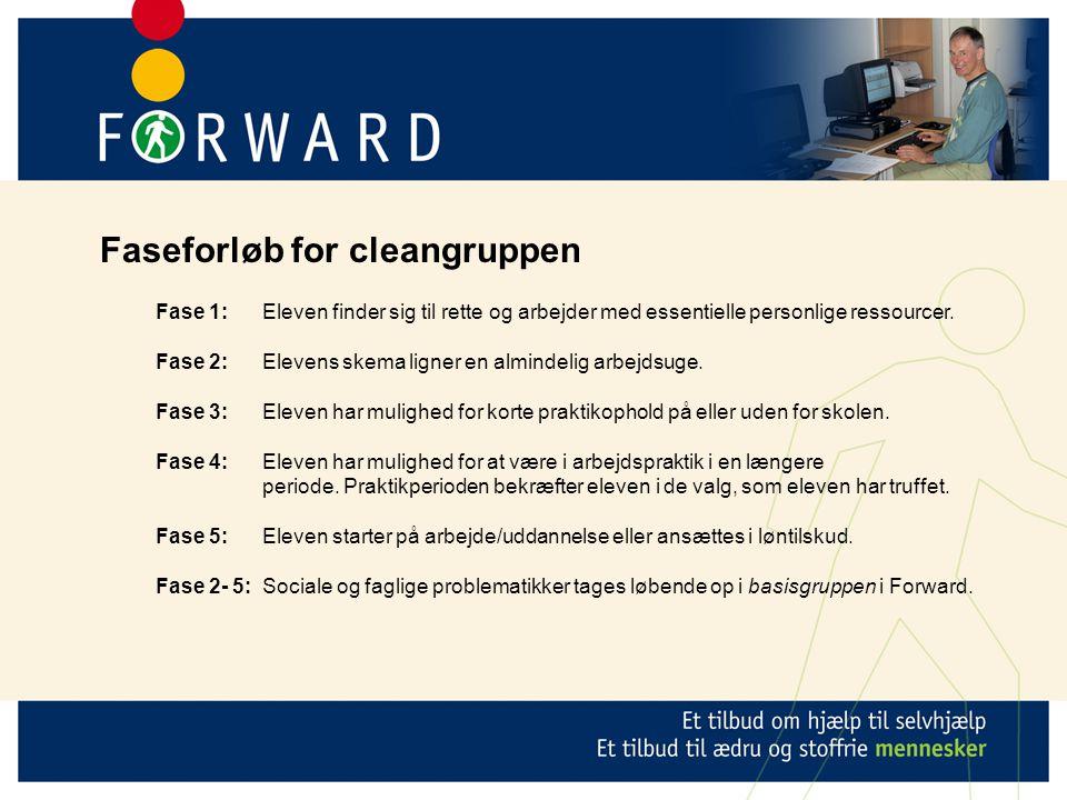 Faseforløb for cleangruppen Fase 1: Eleven finder sig til rette og arbejder med essentielle personlige ressourcer.