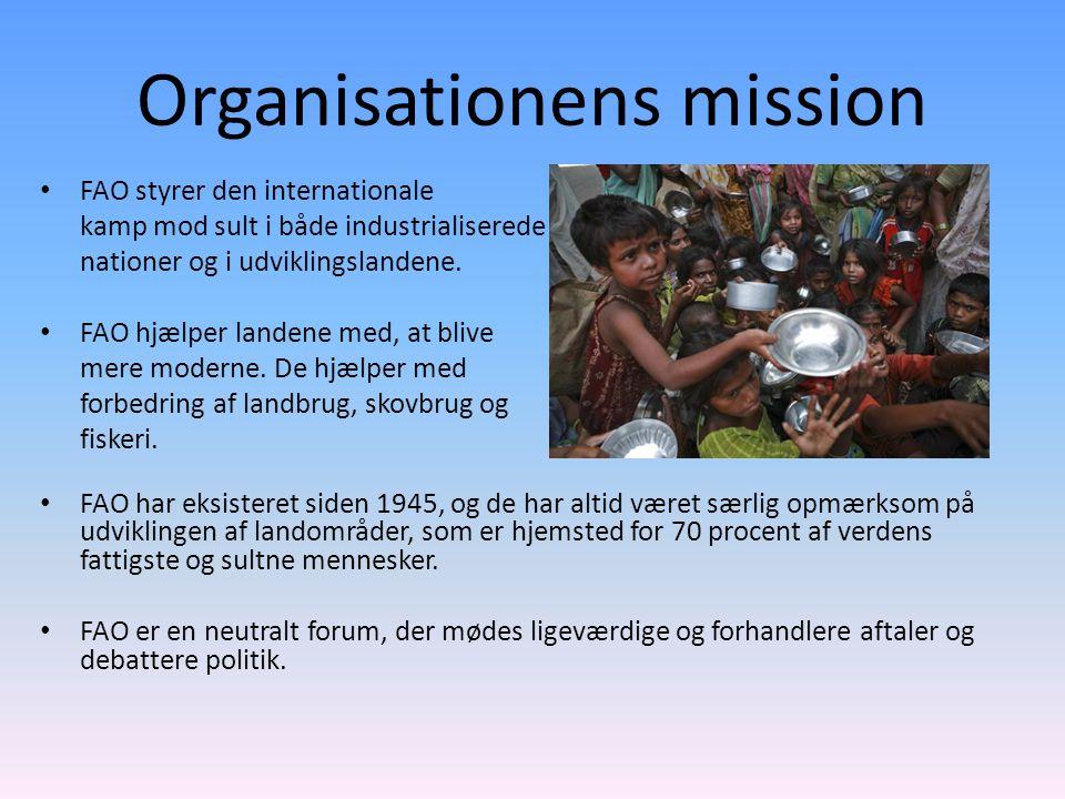 Organisationens mission FAO styrer den internationale kamp mod sult i både industrialiserede nationer og i udviklingslandene.
