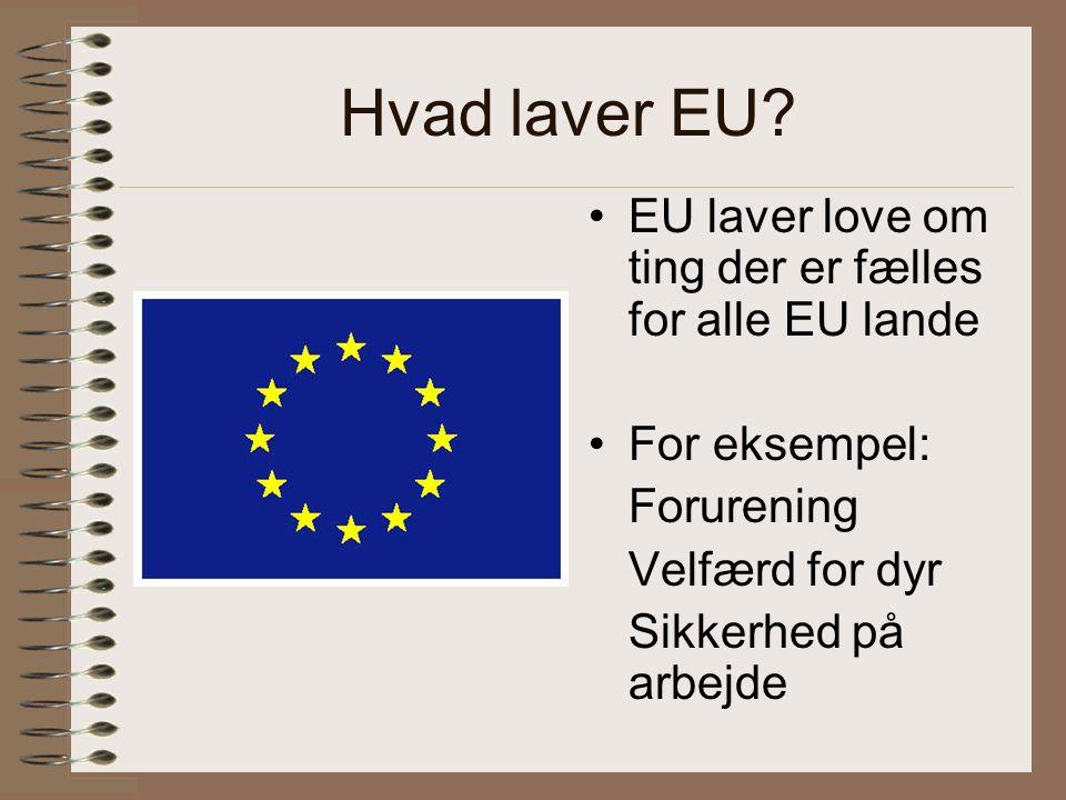 Hvad laver EU.