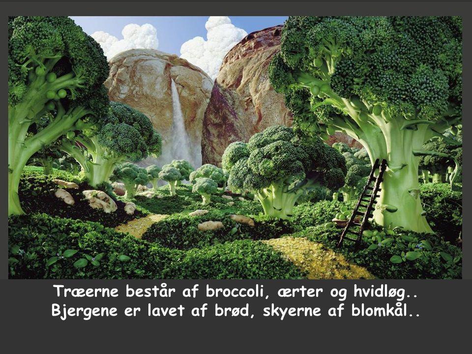 Træerne består af broccoli, ærter og hvidløg.. Bjergene er lavet af brød, skyerne af blomkål..