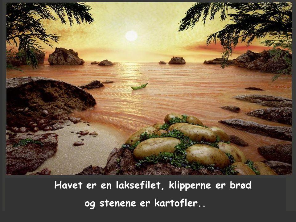 Havet er en laksefilet, klipperne er brød og stenene er kartofler..