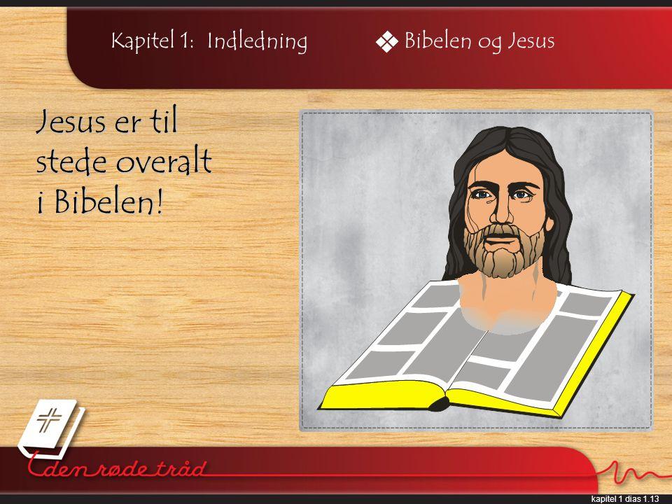 kapitel 1 dias 1.13 Kapitel 1: Indledning Jesus er til stede overalt i Bibelen! Bibelen og Jesus