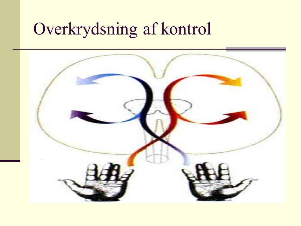 Overkrydsning af kontrol