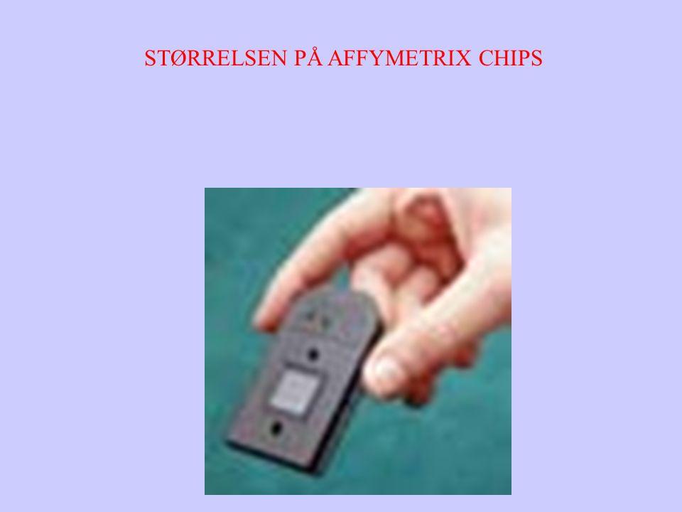 STØRRELSEN PÅ AFFYMETRIX CHIPS