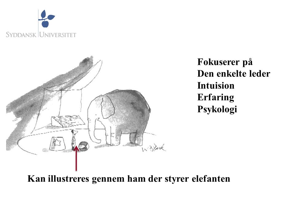 Fokuserer på Den enkelte leder Intuision Erfaring Psykologi Kan illustreres gennem ham der styrer elefanten