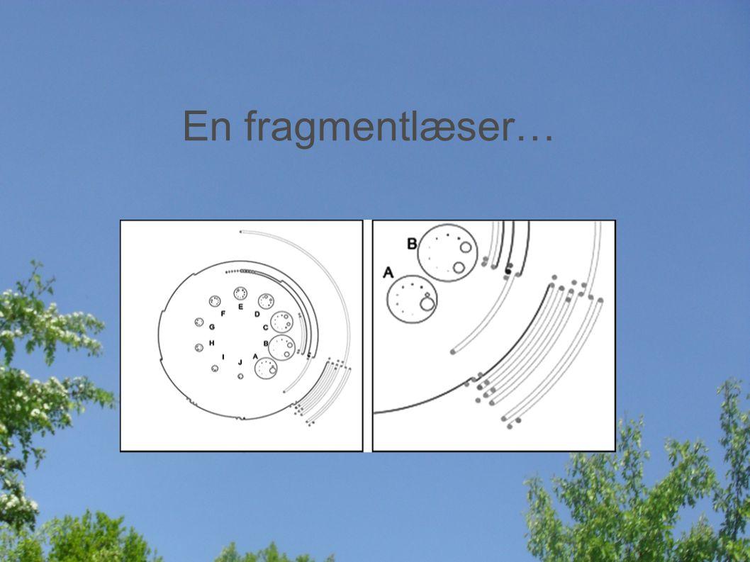 En fragmentlæser…
