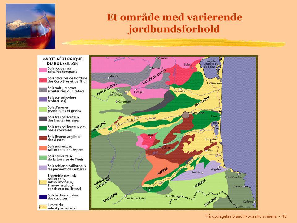 På opdagelse blandt Roussillon vinene - 10 Et område med varierende jordbundsforhold