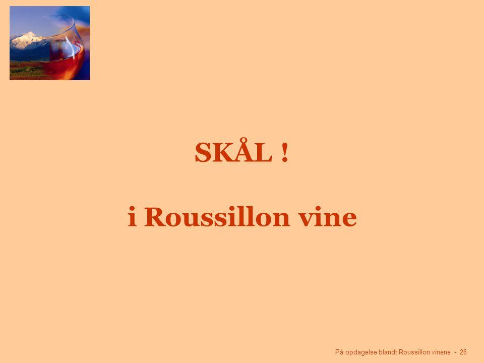 På opdagelse blandt Roussillon vinene - 26 SKÅL ! i Roussillon vine