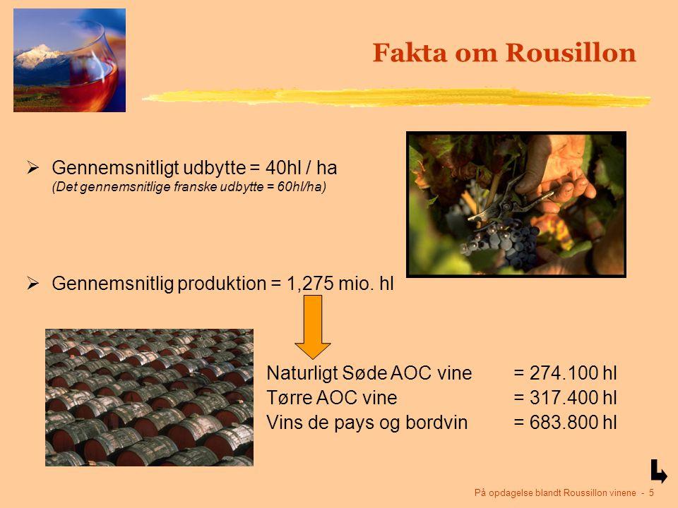 På opdagelse blandt Roussillon vinene - 5 Fakta om Rousillon  Gennemsnitligt udbytte = 40hl / ha (Det gennemsnitlige franske udbytte = 60hl/ha)  Gennemsnitlig produktion = 1,275 mio.