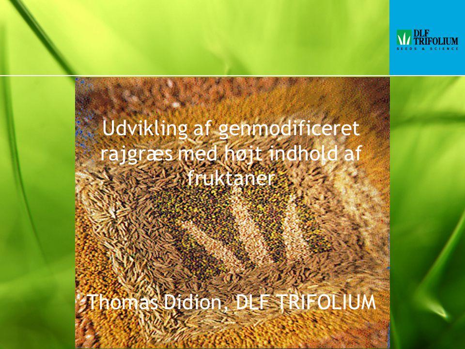 Udvikling af genmodificeret rajgræs med højt indhold af fruktaner Thomas Didion, DLF TRIFOLIUM