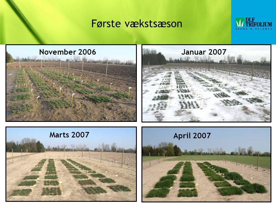 Første vækstsæson November 2006Januar 2007 April 2007 Marts 2007