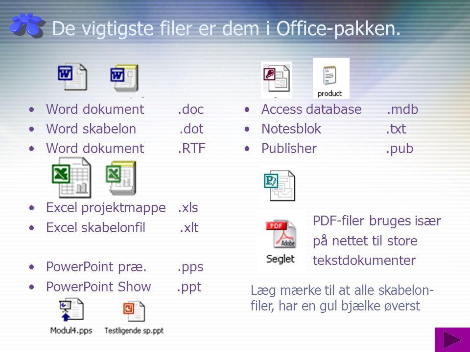 De vigtigste filer er dem i Office-pakken.