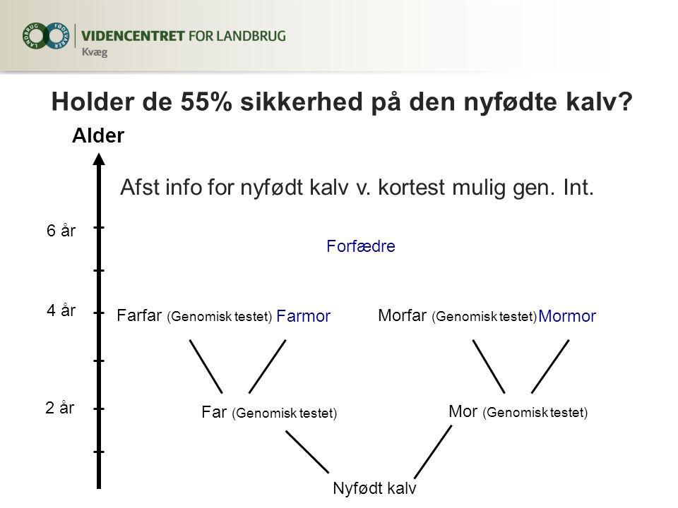 Alder 2 år 4 år 6 år Nyfødt kalv Far (Genomisk testet) Farfar (Genomisk testet) Mor (Genomisk testet) Morfar (Genomisk testet) MormorFarmor Forfædre Afst info for nyfødt kalv v.