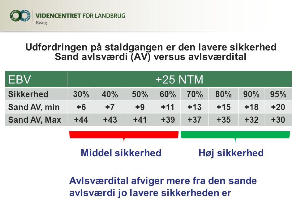 Udfordringen på staldgangen er den lavere sikkerhed Sand avlsværdi (AV) versus avlsværdital EBV+25 NTM Sikkerhed30%40%50%60%70%80%90%95% Sand AV, min+6+7+9+11+13+15+18+20 Sand AV, Max+44+43+41+39+37+35+32+30 Middel sikkerhedHøj sikkerhed Avlsværdital afviger mere fra den sande avlsværdi jo lavere sikkerheden er