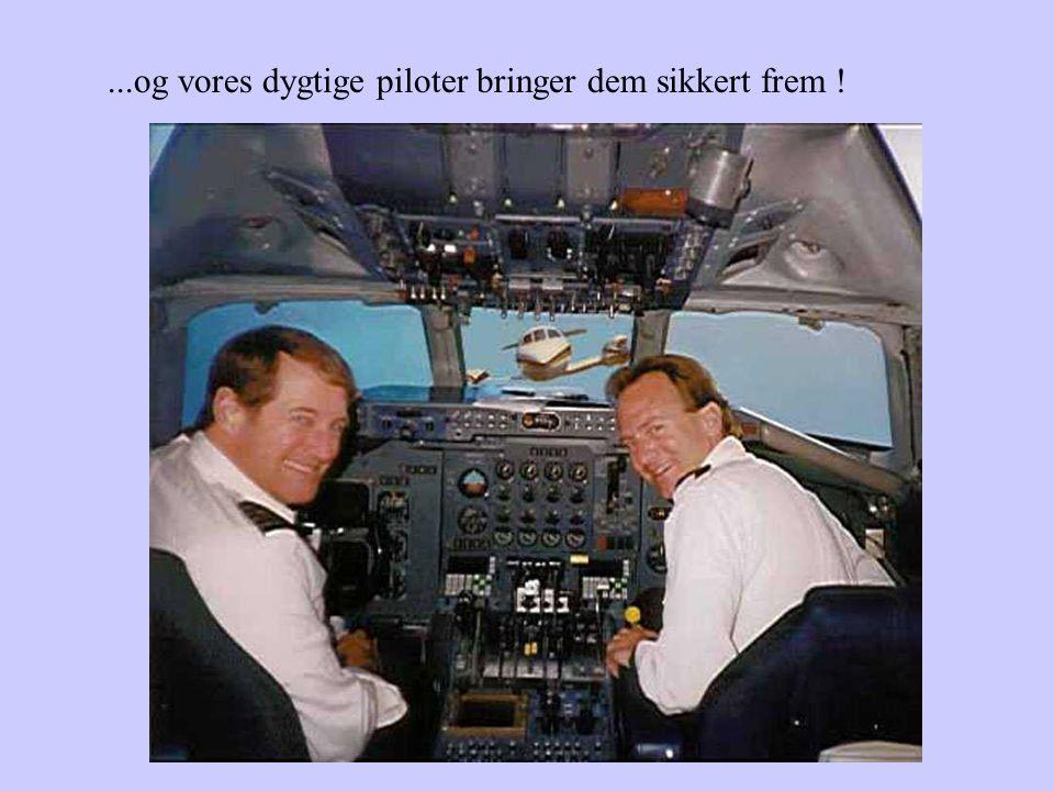 Vore dygtige teknikere holder flyene i god stand...