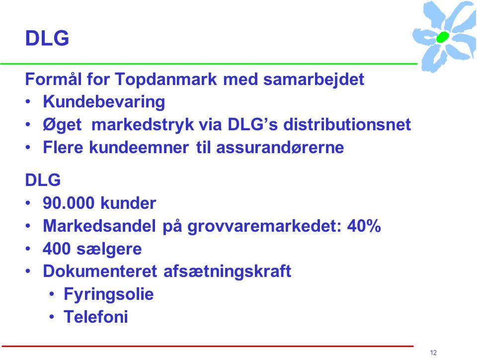 12 DLG Formål for Topdanmark med samarbejdet Kundebevaring Øget markedstryk via DLG's distributionsnet Flere kundeemner til assurandørerne DLG 90.000 kunder Markedsandel på grovvaremarkedet: 40% 400 sælgere Dokumenteret afsætningskraft Fyringsolie Telefoni
