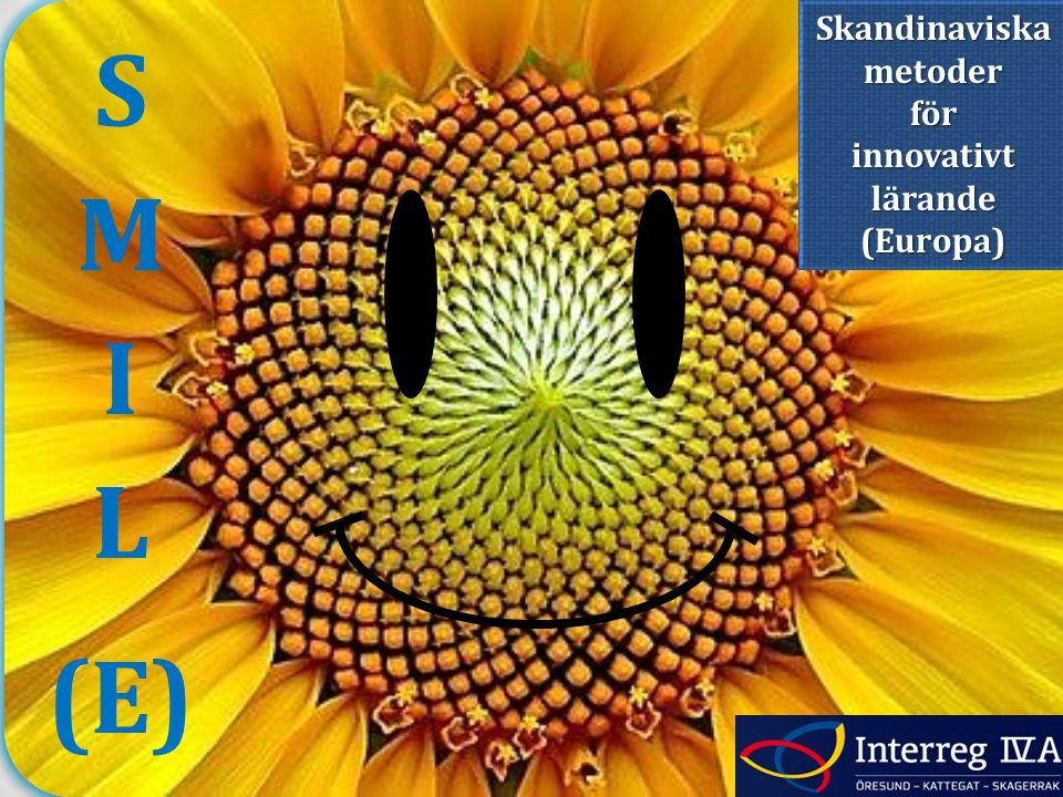 (E) Skandinaviska metoder för innovativt lärande (Europa)