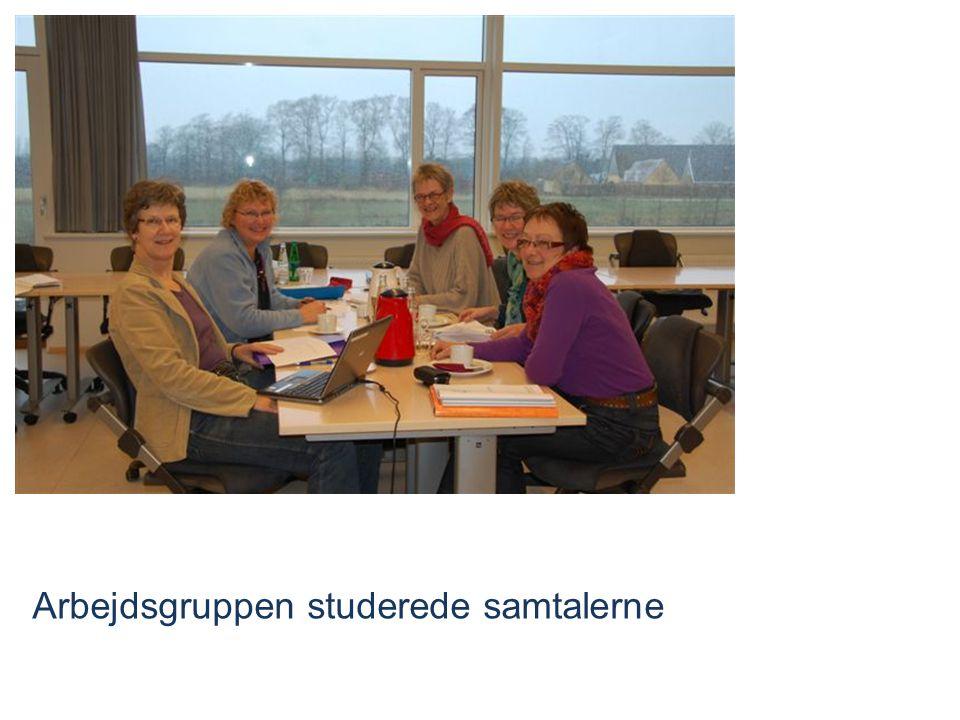 Arbejdsgruppen studerede samtalerne